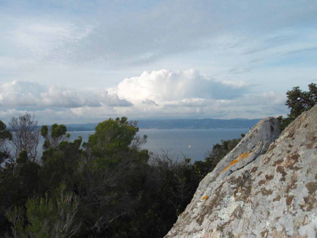 Vue de la réserve naturelle des arbousiers